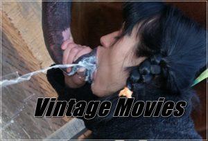 Vintage zoo sex Movies
