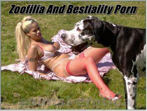 Bestality Porn