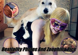Bestiality Photos And Zoophilia Pics